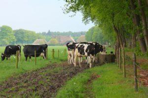 woonboerderij hypotheek